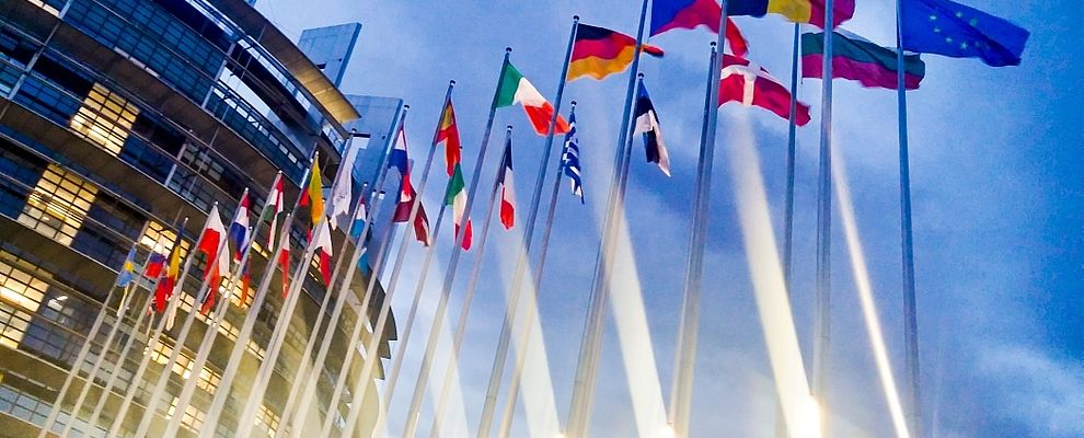 Colorful flags of European countires in front of an official EU building.