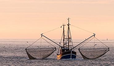 Fishing boat out at sea